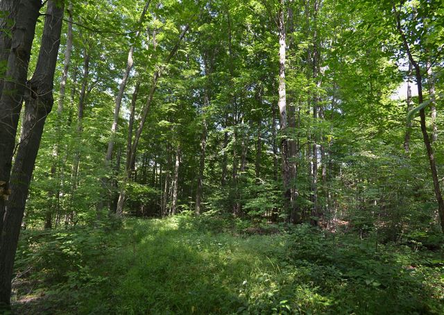 Property For Sale In Claridon Township